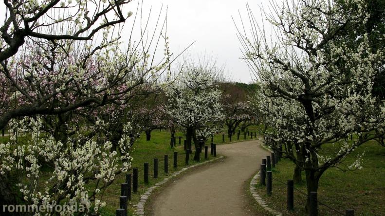 Osaka-jo Garden