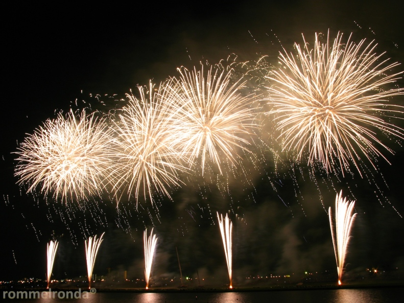 Edogawa Fireworks Festival (江戸川区花火大会)