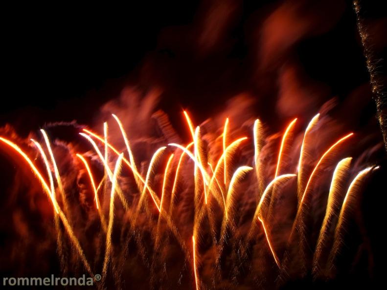 Tamagawa Fireworks Festival (多摩川花火大会)