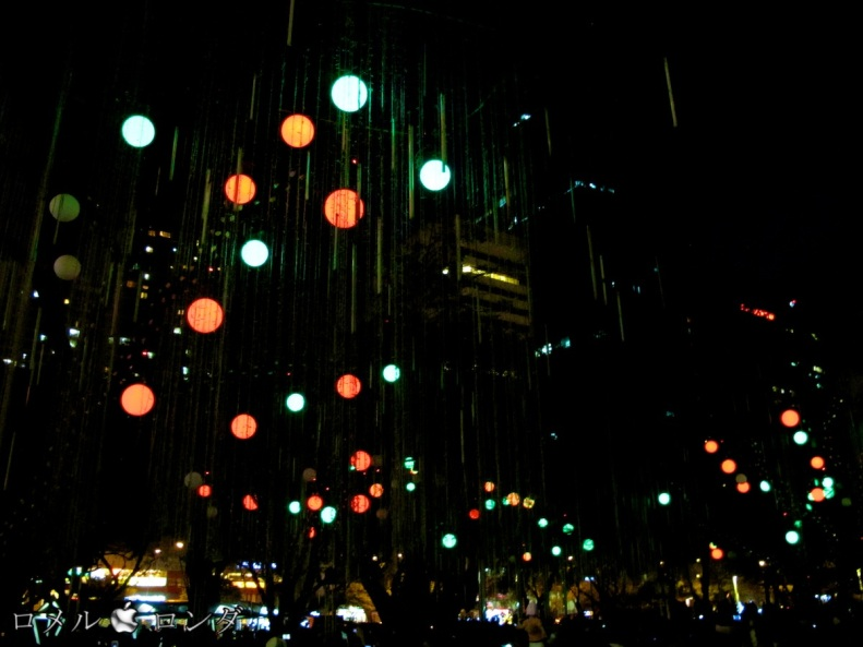Christmas 2012 026