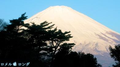 Fuji-san 2