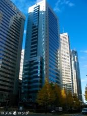 Shinjuku 5 (1)