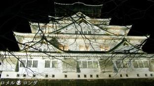 Osaka Castle 003
