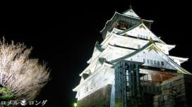 Osaka Castle 004