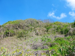 Bararing Island 044