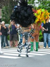 Samba 012