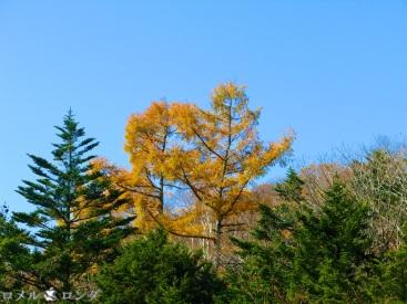 Ryuzu Falls 010