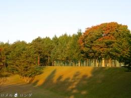 Karuizawa Seminar House 014
