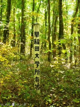 Karuizawa Seminar House 024