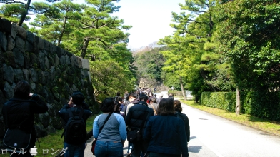 Tokyo Imperial Palace 003