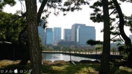 Tokyo Imperial Palace 013