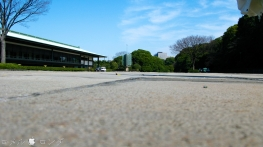 Tokyo Imperial Palace 018