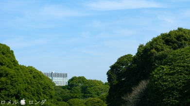 Tokyo Imperial Palace 024