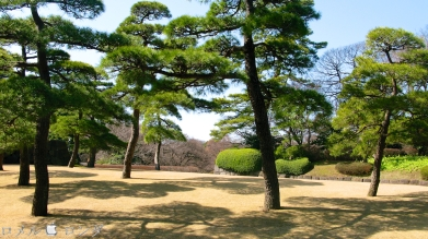 Tokyo Imperial Palace 029