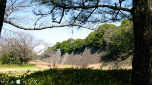 Tokyo Imperial Palace 033