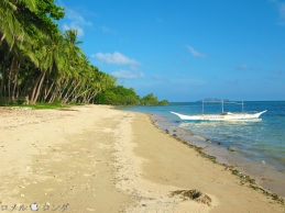 Coco Verde Beach 003