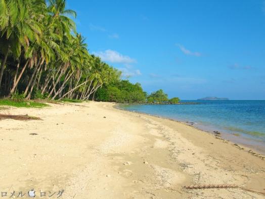 Coco Verde Beach 004