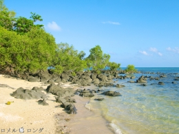 Coco Verde Beach 009