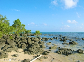 Coco Verde Beach 010