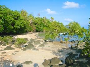 Coco Verde Beach 011