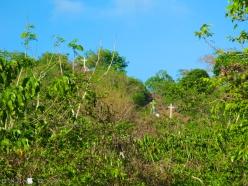 Mt. Aguado 006