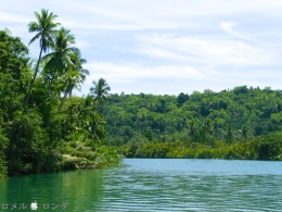 Loboc River 14
