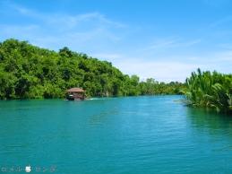 Loboc River 20