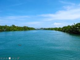 Loboc River 23