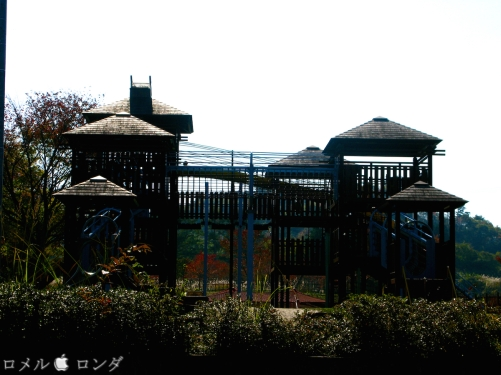 Shirakawa Sekinomori Park 007