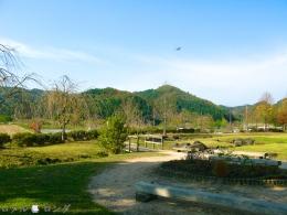 Shirakawa Sekinomori Park 008