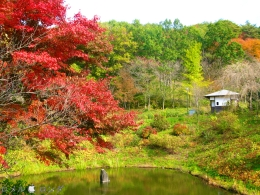 Shirakawa Sekinomori Park 015