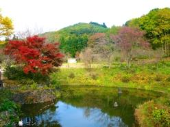 Shirakawa Sekinomori Park 017