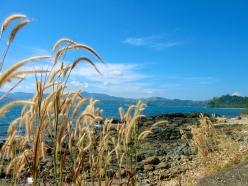 Cabalitian Island 039