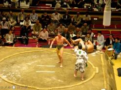 Sumo32