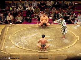 Sumo33